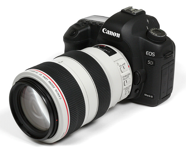 canon 55-250 mm f4-5.6 is キヤノン:EF-S55-250mm F4-5.6 IS II. - cweb.canon.jp